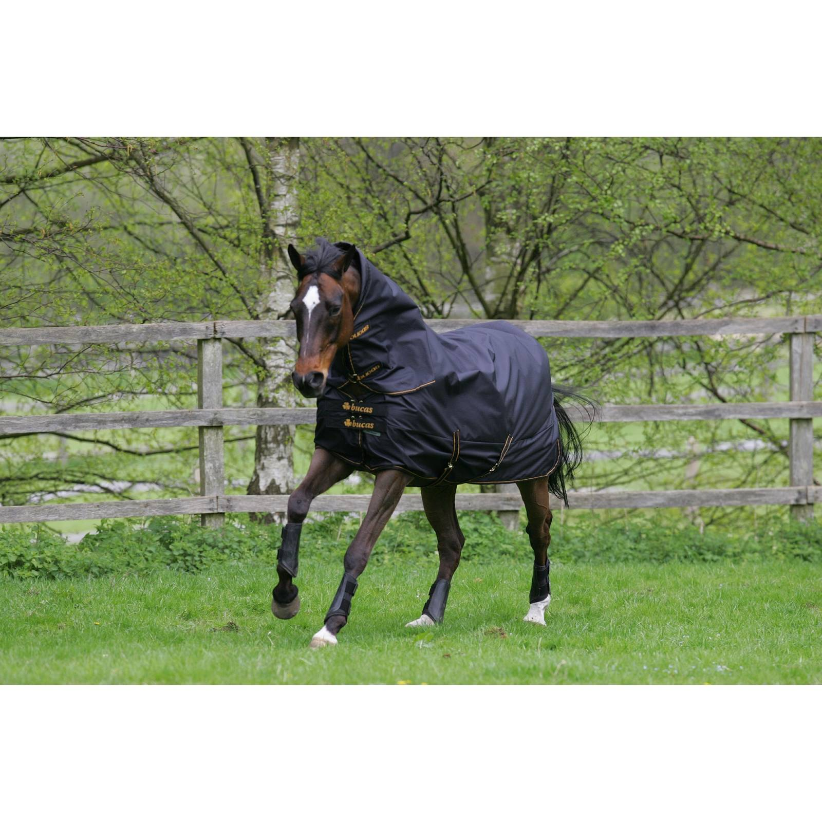 Bucas Irish Combi Horse Neck Rug