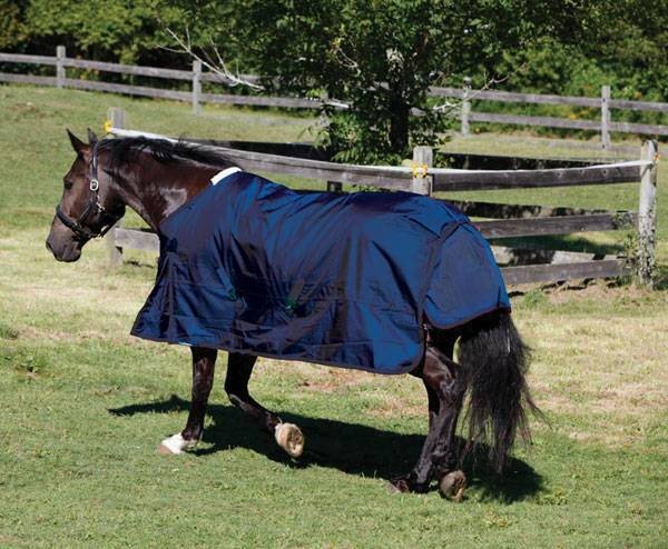 Outlet - Shires Stormcheeta 2000D Turnout Blanket - 200G, 78, Navy