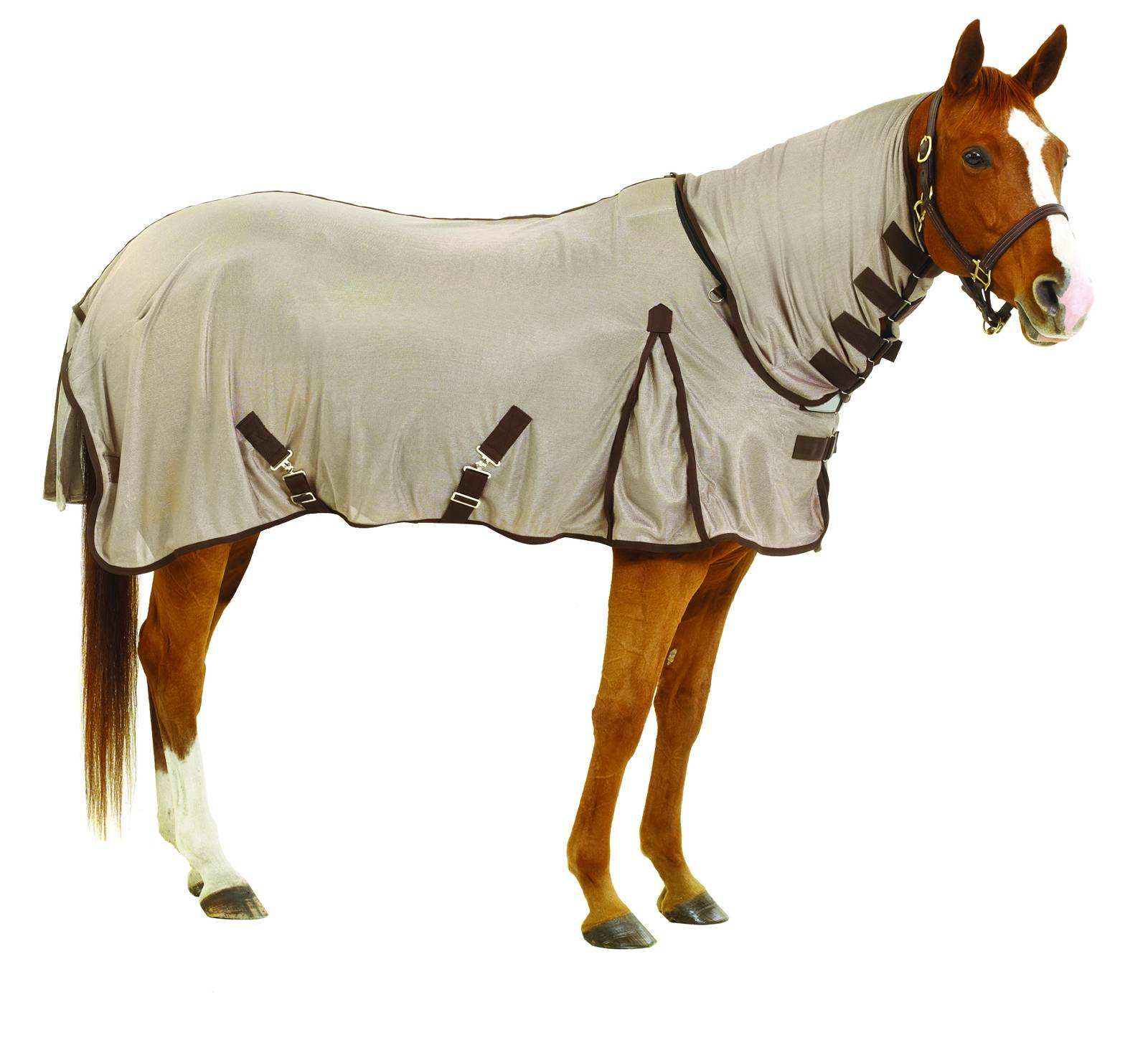 Centaur Creamed Fly Sheet with Neck Cover