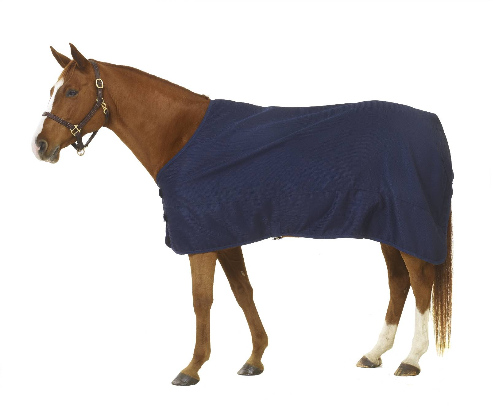 Centaur ThermaDry Stable Sheet