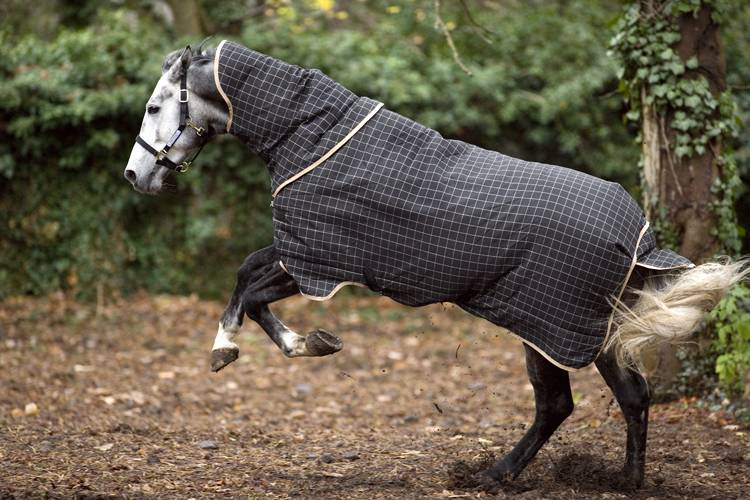 Rhino Plus Turnout Blanket - Heavyweight (400g)