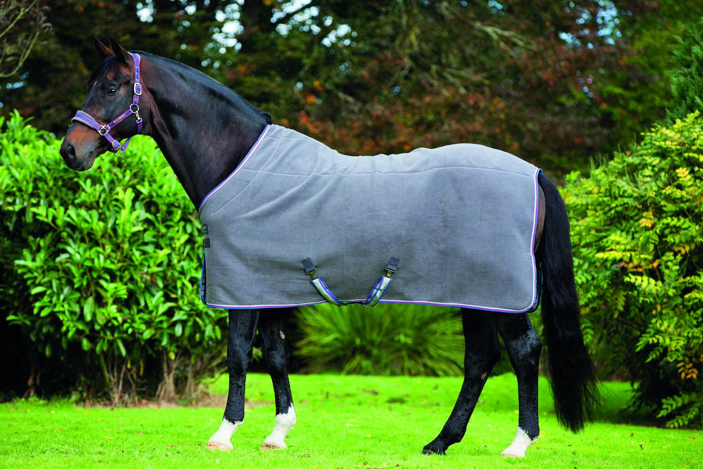 Rambo Deluxe Fleece Cooler - Solid Colors