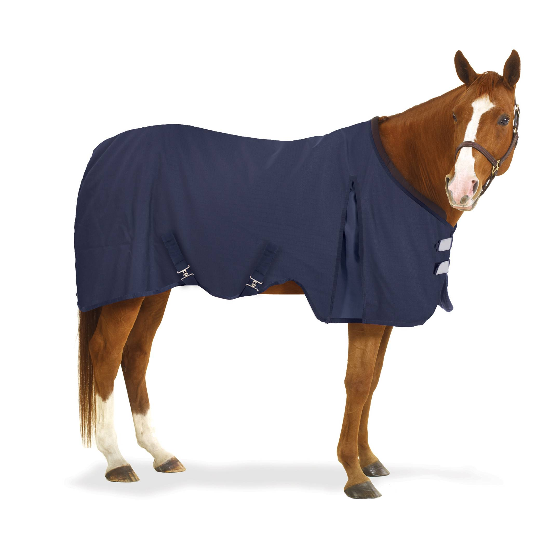 Equi-Essentials EZ-Care Stable Sheet - Solid Colors