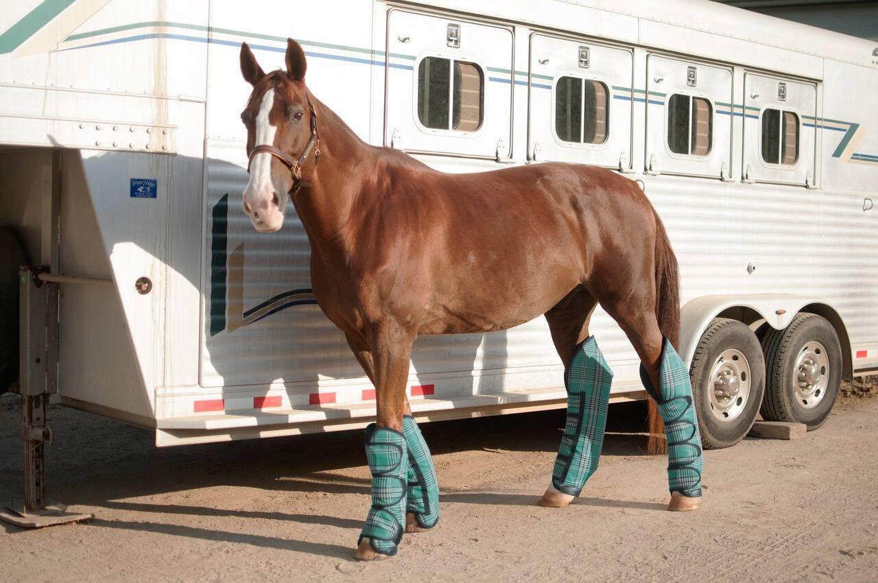 Kensington Trailering Boots with Textene