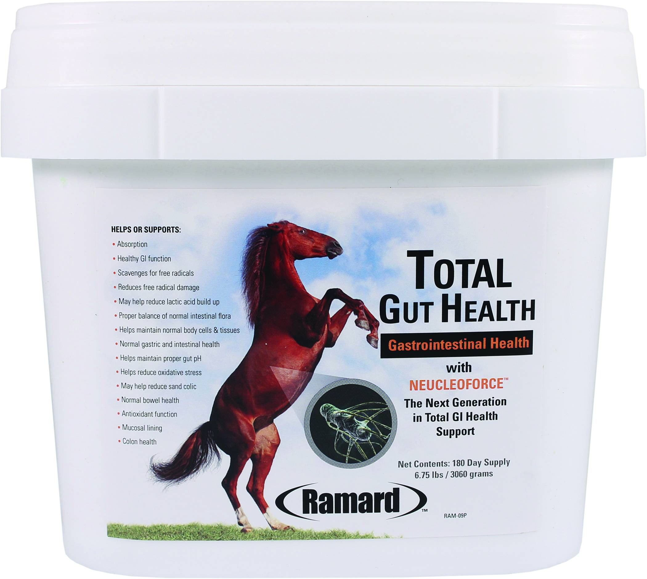 Total Gut Health With Neucleoforce