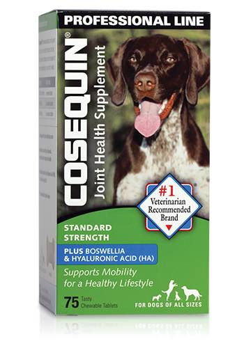 Cosequin Standard Strength Plus