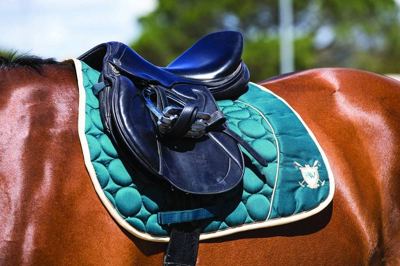 Rambo Fashion Saddle Pad
