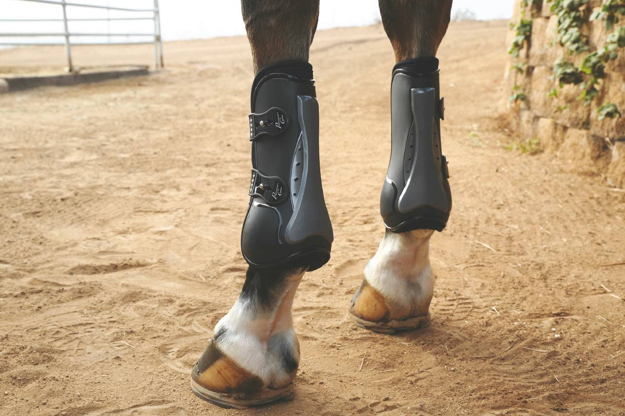Professionals Choice Pro Performance Show Boots - Front, TPU Fasteners