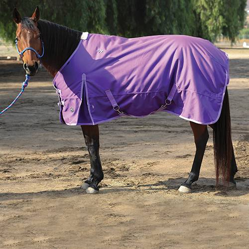 Professional's Choice 1200D Winter Blanket