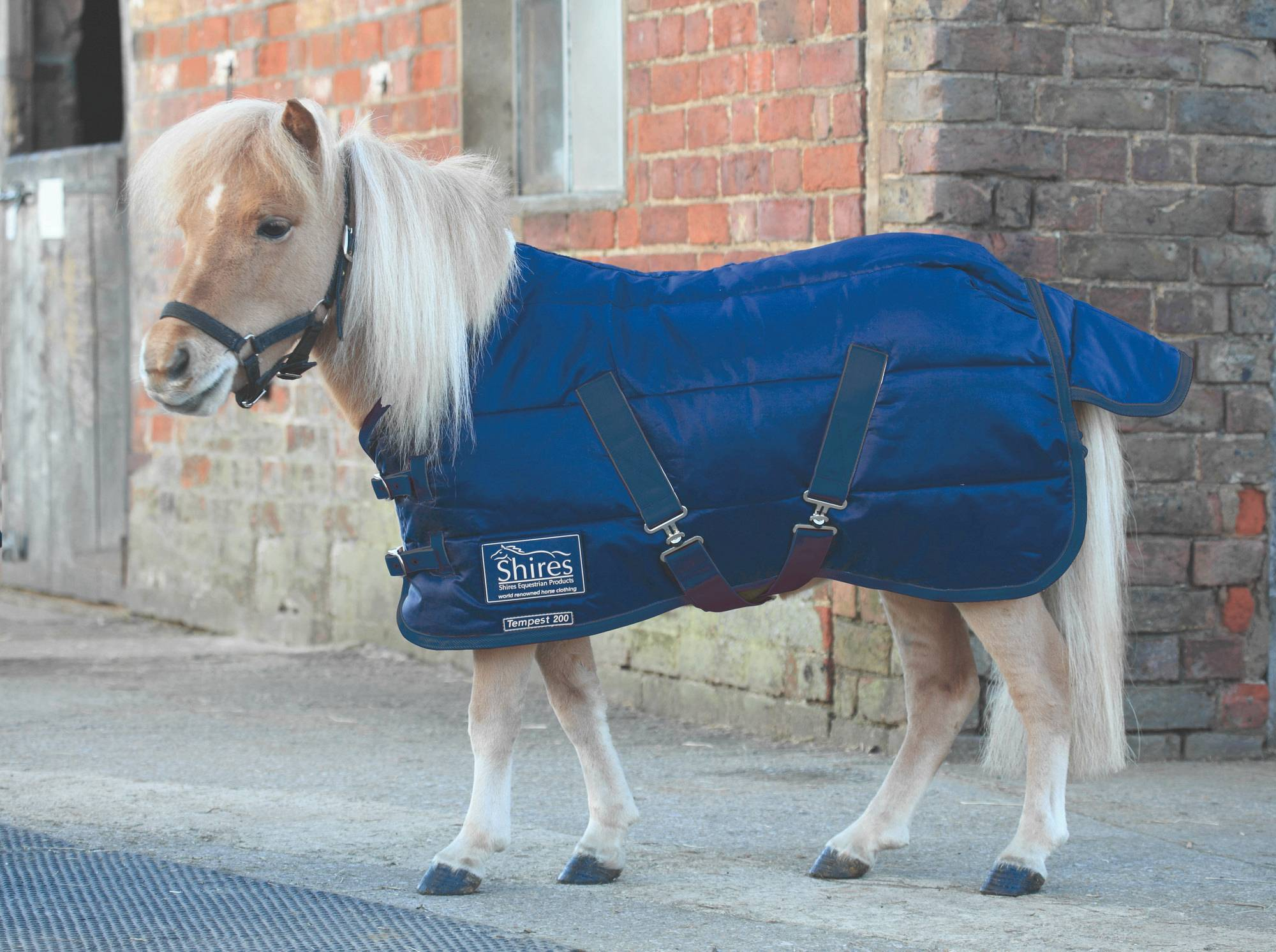 Shires Tempest Stable Blanket - Miniature, 200 gm
