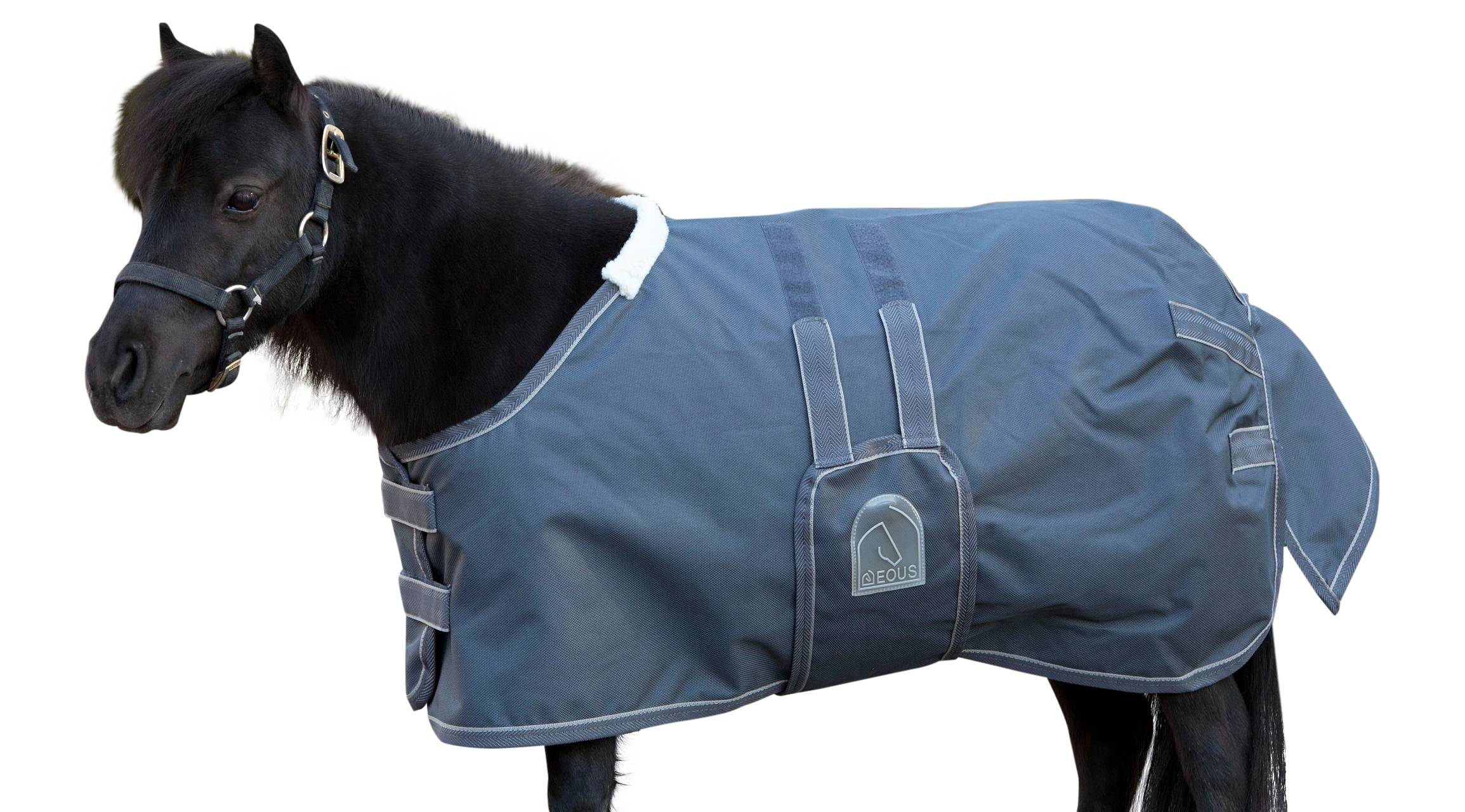 EOUS Foal/Mini Turnout Blanket - LightWeight