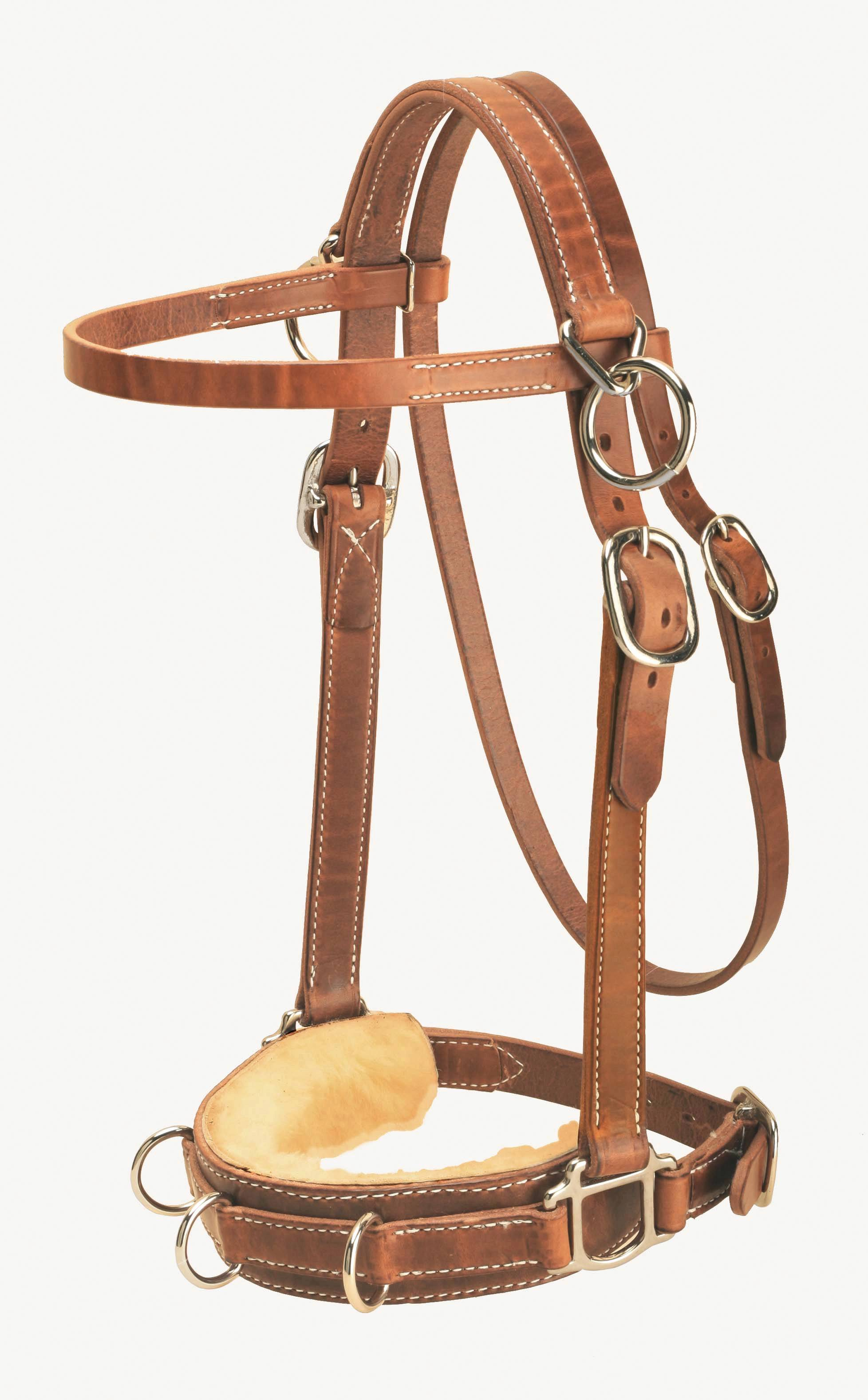 Tory Leather Heavy Duty Harness Leather Lunge Caveson