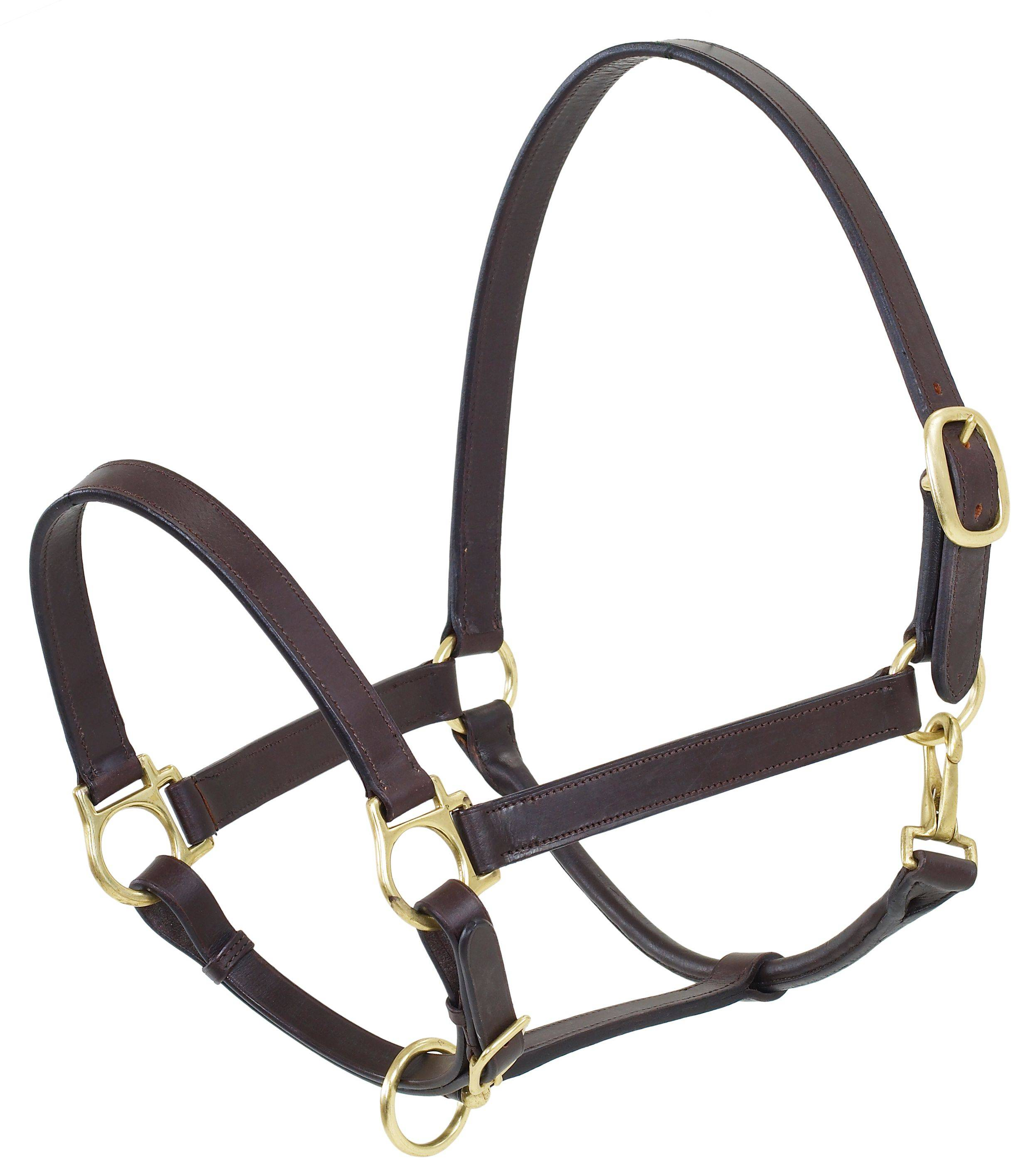 Camelot Oversize Stable Halter