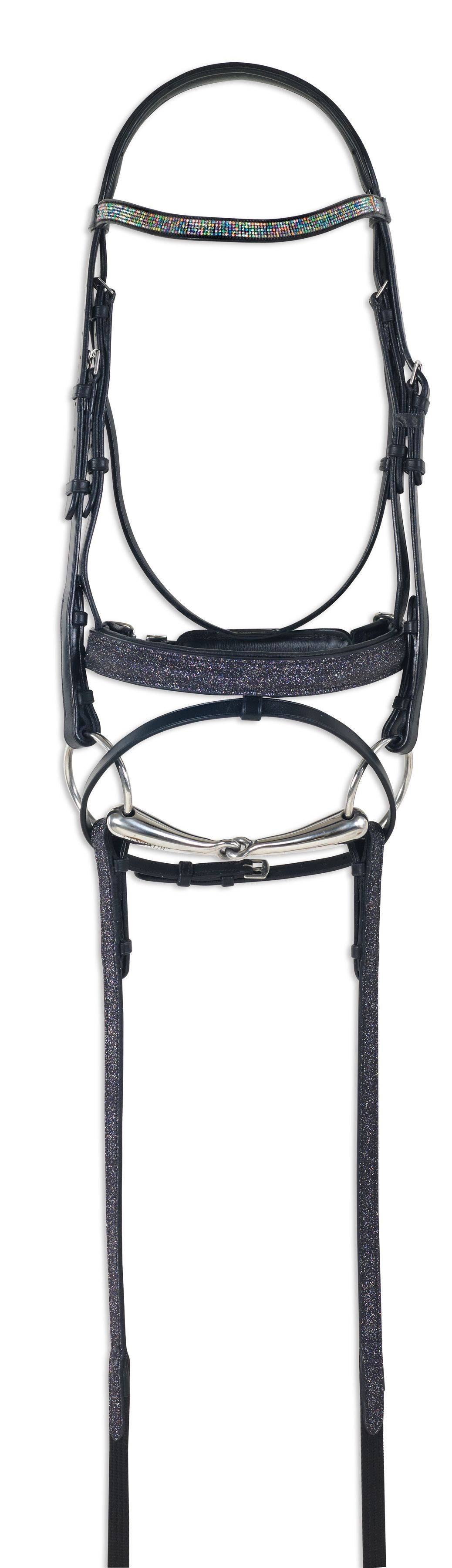 Ovation Fantasia Dressage Bridle with Web Reins
