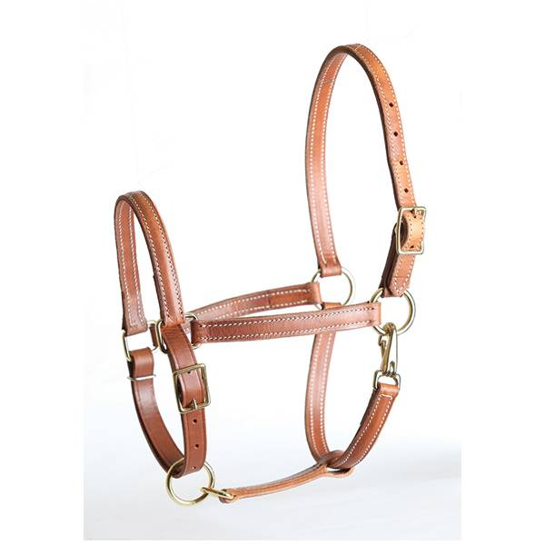 Perris Value Leather Halter
