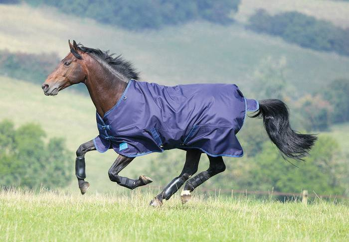Shires Tempest Plus Turnout - 200 gm