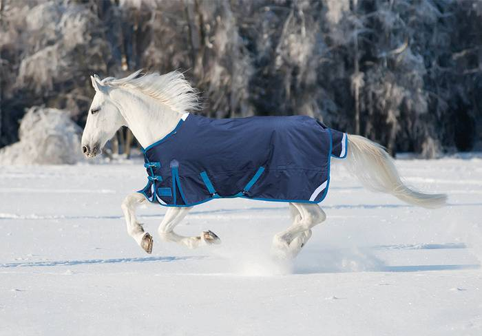 Shires StormBreaker Plus HiNeck Turnout - 220 gm