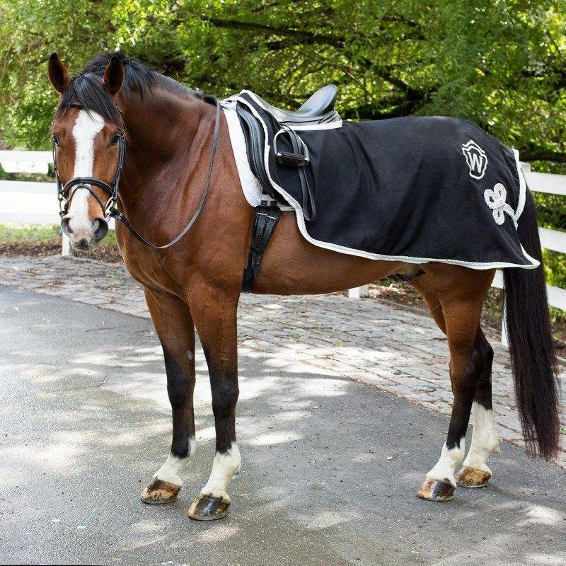 Saratoga Horseworks Wool Riding Blanket