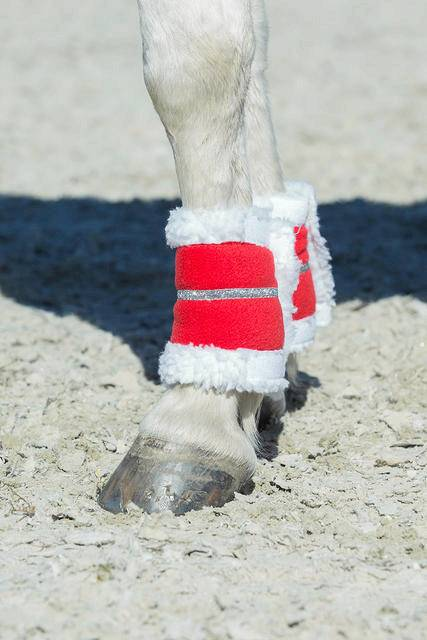 Horze Spirit Christmas Leg Wraps