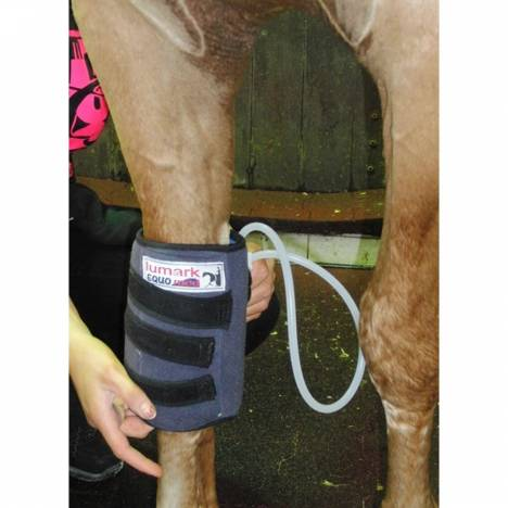 Equomed Knee or Fetlock Compression Boot with Gel Packs