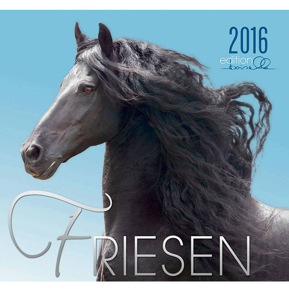 Boiselle Friesian 2016 Calendar with Poster