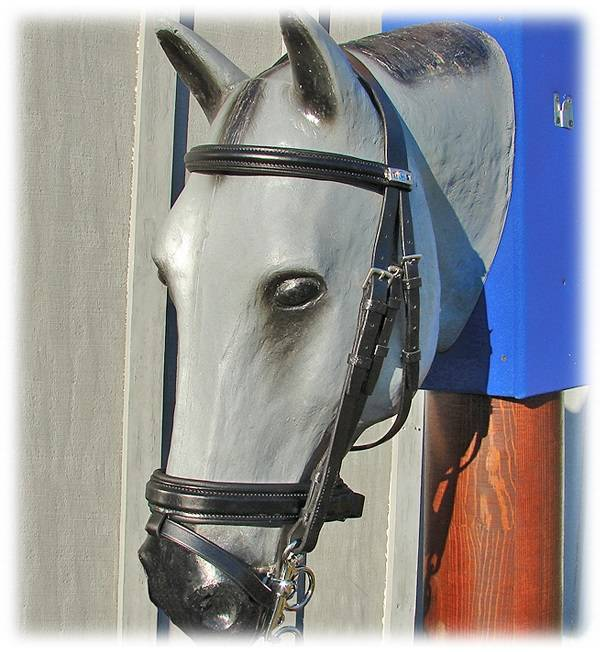 Stubben Bridle with Flash Crank Caveson