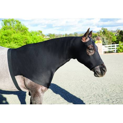 Professionals Choice Horse Hoodie