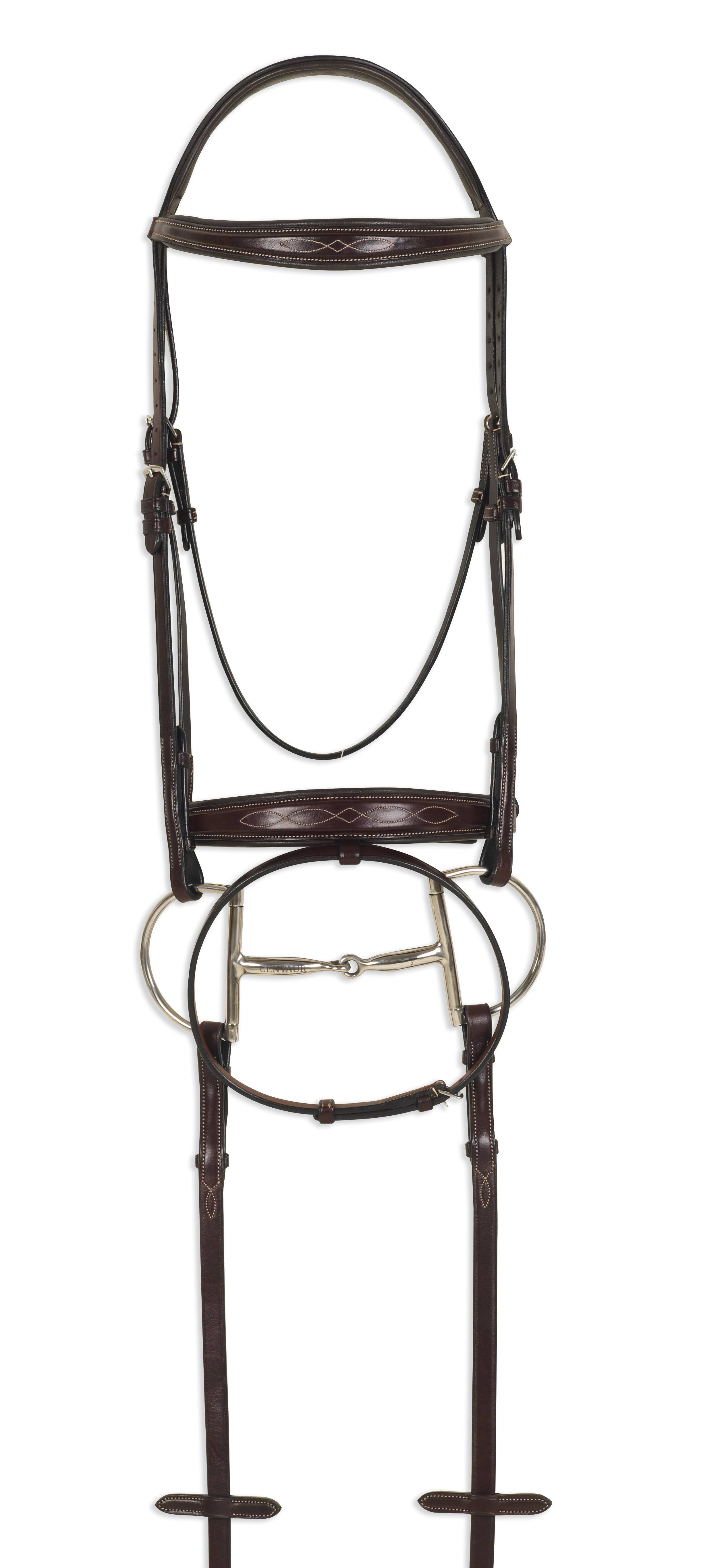 Ovation ATS Square Raised Taper Nose Fancy Stitch Bridle with Flash