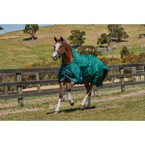 Weatherbeeta Comfitec Plus Dynamic High Neck Blanket- Medium