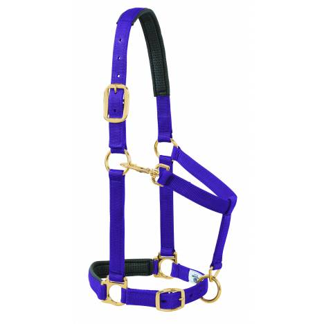 Weaver Solid Color Padded Adjustable Chin and Throat Snap Halter