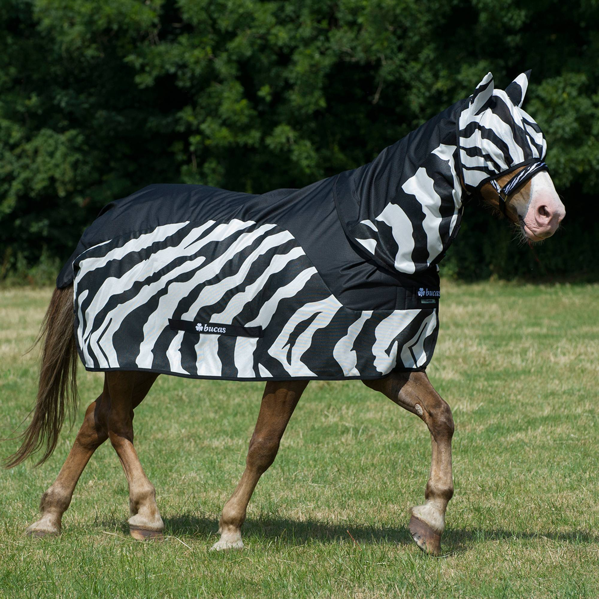 Bucas Buzz Off Rain Neck Cover - Zebra