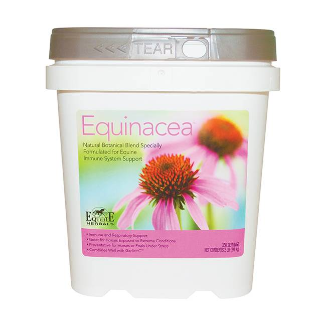 Equilite Equinacea for Horses