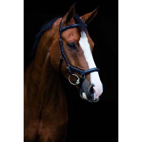 Micklem Deluxe Competition Bridle - English Leather