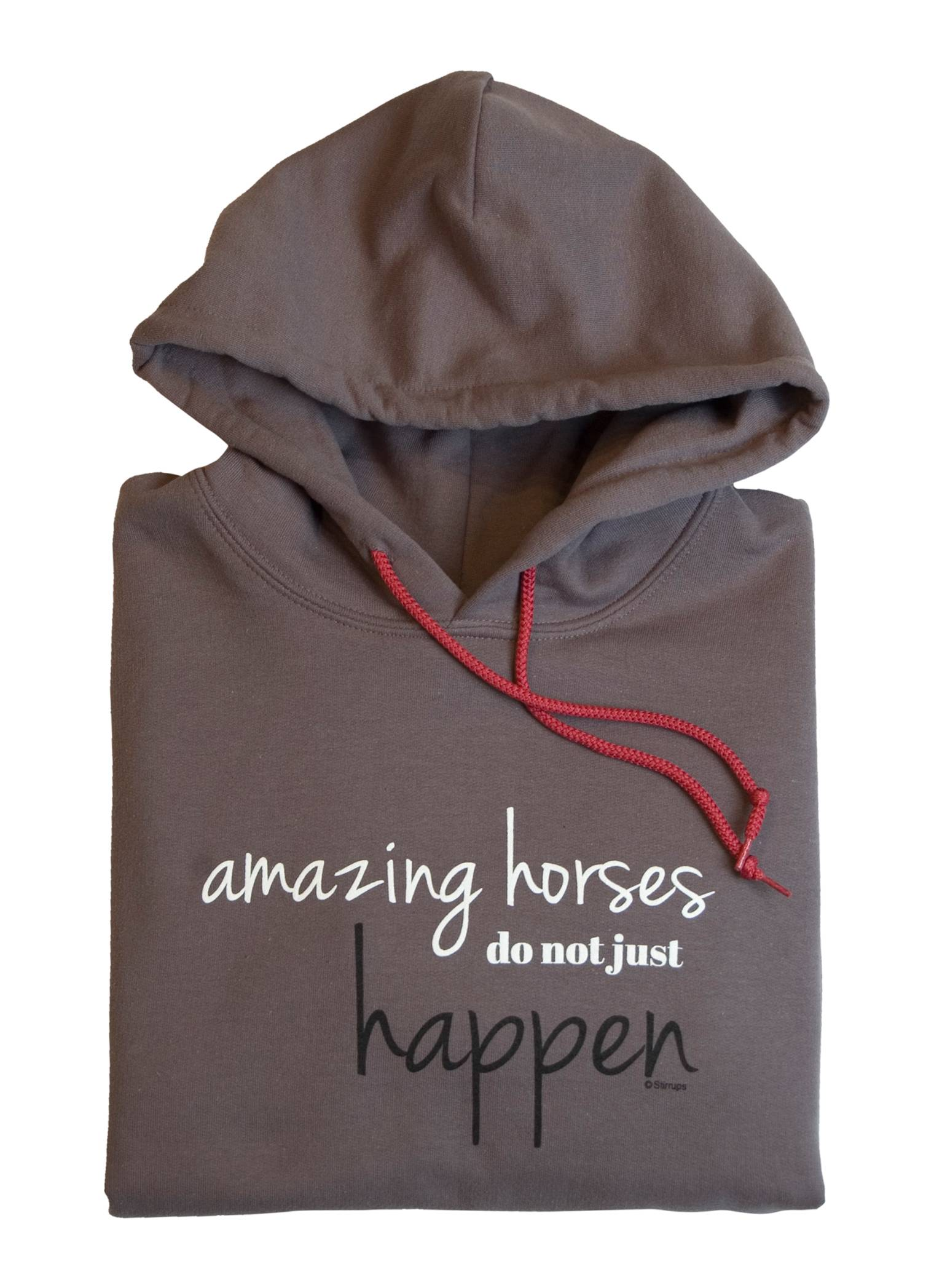 Stirrups Amazing Horses Hooded Sweatshirt - Ladies