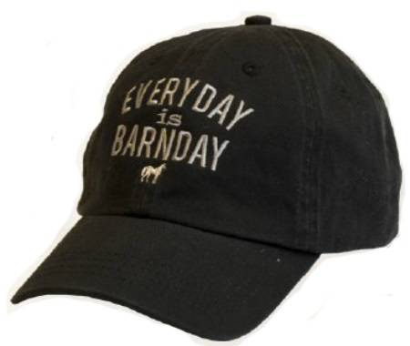 Stirrups Everyday Is Barnday Embroidered Cap - Kids