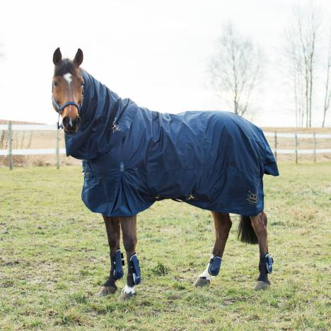Horze Crescendo Holbrook Medium Turnout Blanket - 250 gm