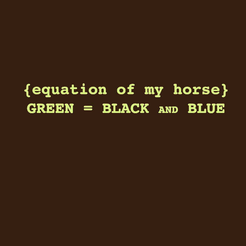 Sound Equine Equation Of My Horse Tee Shirt- Ladies