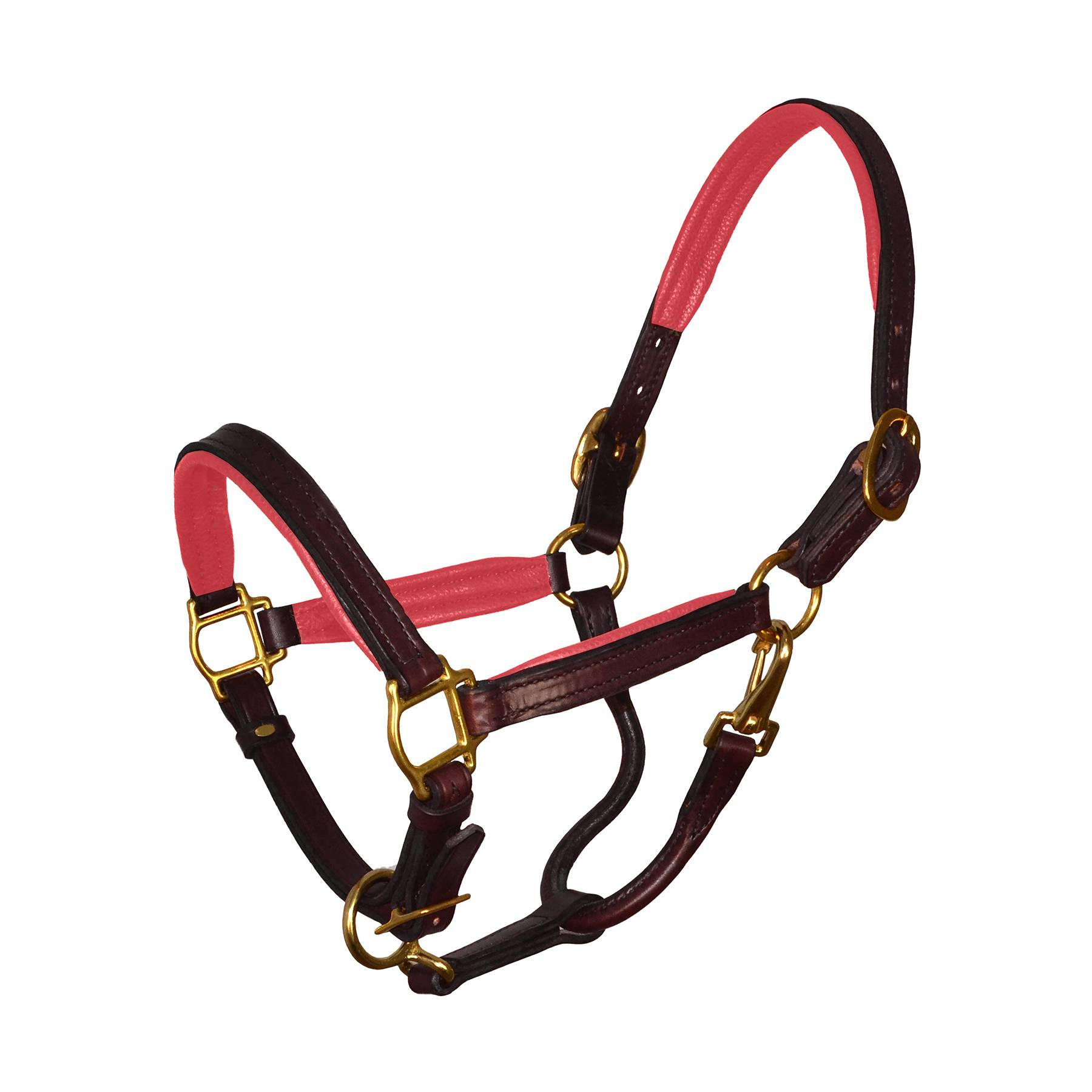 Perris Soft Padded Leather Halter