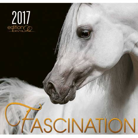 Boiselle Art Calendar Fascination - 2017