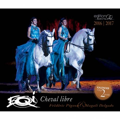 Boiselle Mid Sized Calendar Federic Pigon & Magali Magic - 2017
