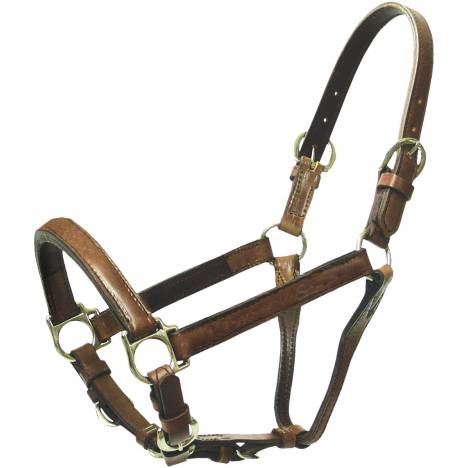 Abetta Leather Silver Show Halter