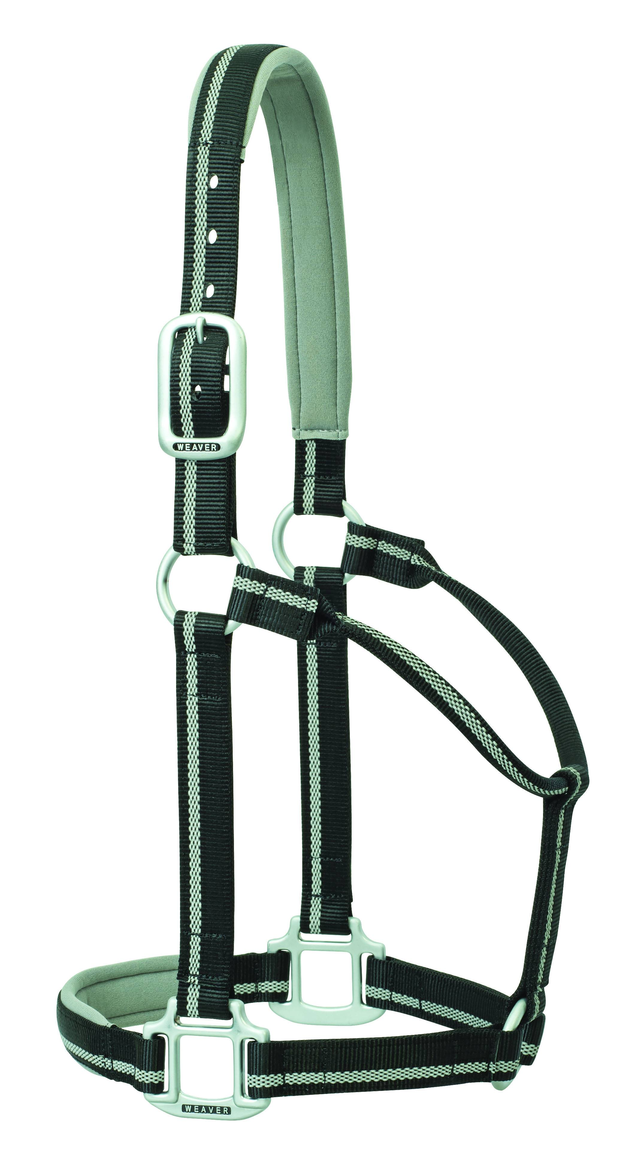 Weaver Nylon Padded Reflective Non-Adjustable Horse Halter