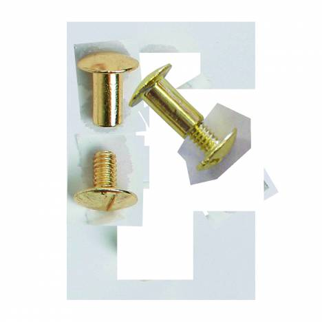 Colorado Saddlery Brass 10 Pack Chicago Screws