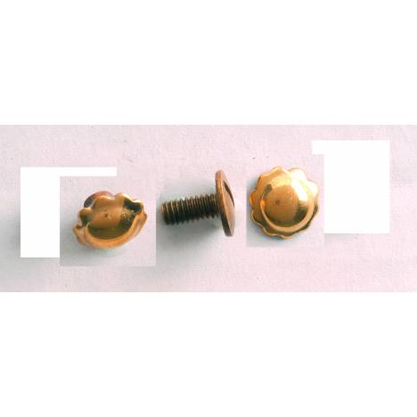 Colorado Saddlery Brass Screw Back Spots