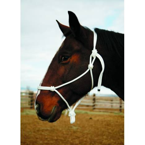 Colorado Saddlery Knotted Halter