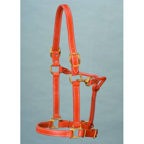 Colorado Saddlery Top Of The Line Leather Track Style Halter