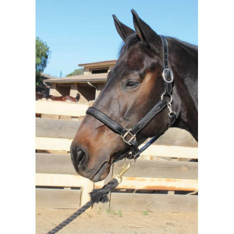 Professional's Choice Leather Halter