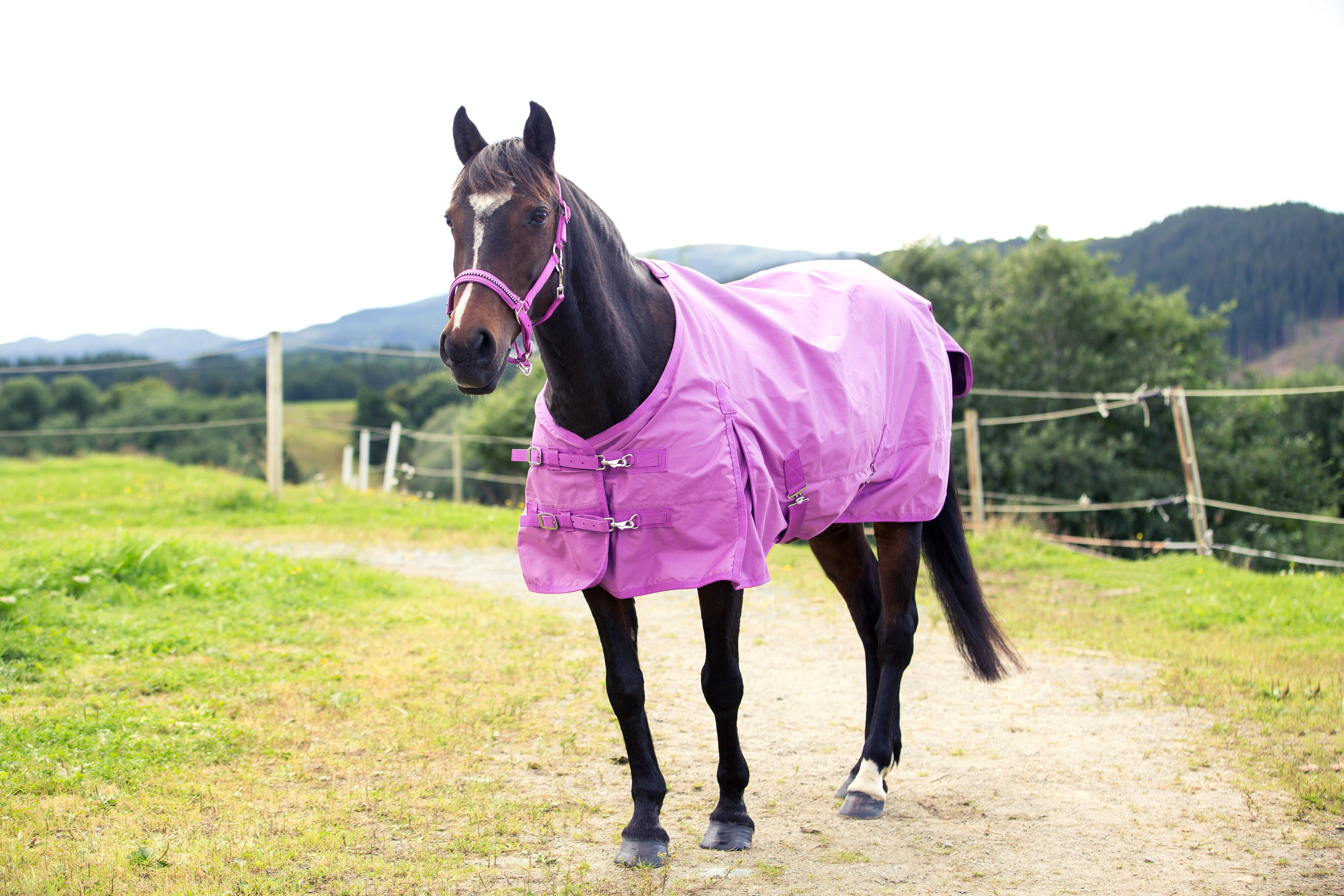 Horze Turnout Blanket- Pony