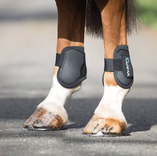 Shires Arma Rear Fetlock Boot