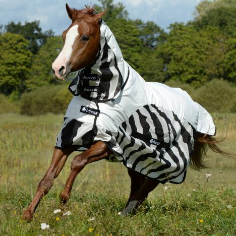 Bucas Buzz Off Zebra Full Neck Rain Sheet
